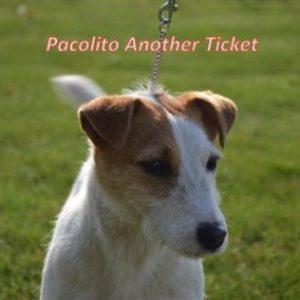 Ticket-2017-1_480x316